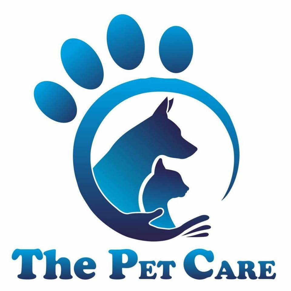 Dog years how to convert your dogs age from human years the pet care nvjuhfo Image collections